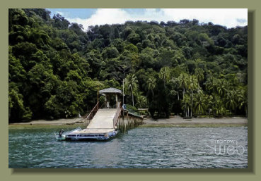 The private Pier of a secluded Eco Lodge Beach front Property along the coast of the Golfo Dulce